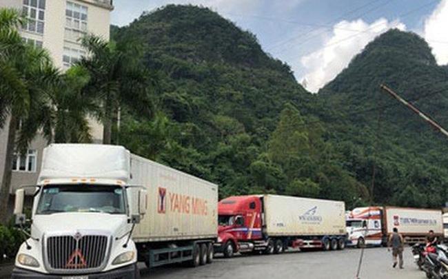 """Hơn 500 container nông sản đang """"tắc"""" ở cửa khẩu, chờ xuất sang Trung Quốc"""