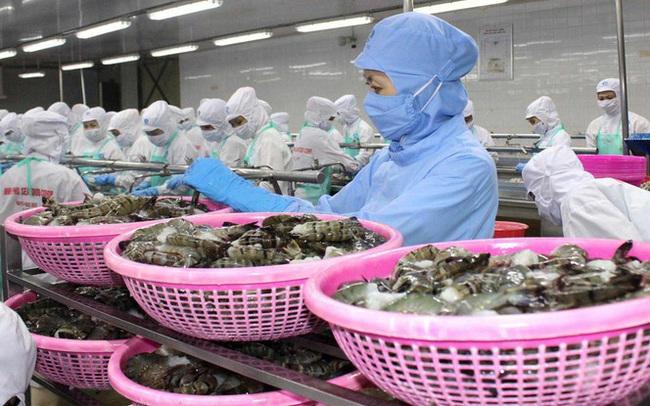 Nghị viện châu Âu thông qua EVFTA: Rộng cửa xuất khẩu cho hàng Việt