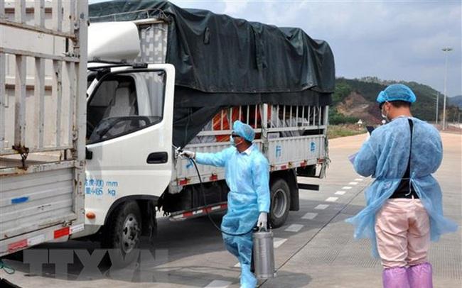 Bàn giải pháp khôi phục kinh tế thương mại Việt Nam-Trung Quốc