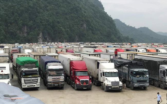 Hàng nghìn xe nông sản ùn ứ ở Lạng Sơn