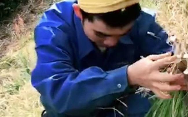 Chàng trai người Việt sống ở Nhật tâm sự thường bị hàng xóm hiểu nhầm là hái cỏ dại ven đường về ăn, nhưng sự thật lại là món cực kỳ quen thuộc mà ở quê nhà ai cũng thích