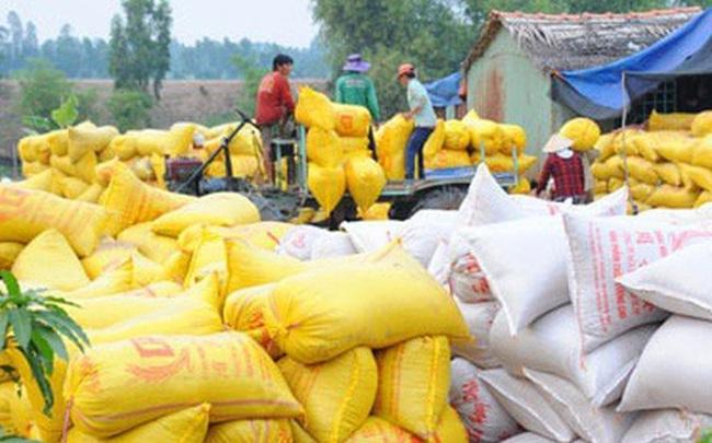 """Bộ Tài chính đề nghị Bộ Công an điều tra việc """"trục lợi chính sách"""" quản lý xuất khẩu gạo"""