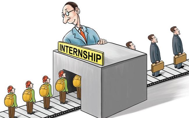 """Sinh viên thực tập: Nếu thấy mình giỏi đừng bị động chờ giao việc, chủ động """"cướp việc"""" mà làm"""