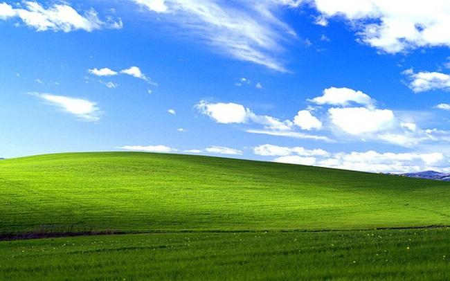 Hình nền huyền thoại trên Windows XP một thời: Được Microsoft trả hơn 100.000 USD vào năm 2000, đến nay vẫn xanh tốt như ngày nào