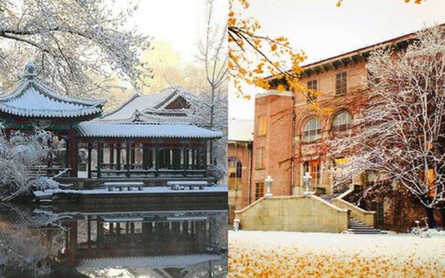 """Trường Đại học được mệnh danh là """"Havard châu Á"""", vừa hiện đại, vừa cổ kính như phim cung đấu"""