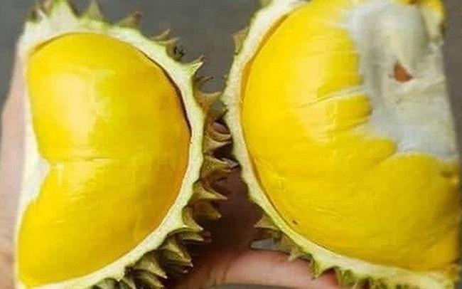 Thực hư sầu riêng Thái Lan nằm gọn trong lòng bàn tay, múi dày siêu ngon 50.000 đồng/quả