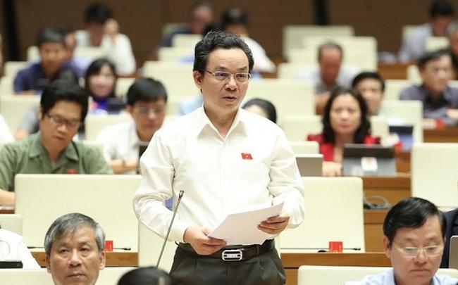 Đại biểu Quốc hội đề xuất biến nhà đầu tư nước ngoài thành trụ cột các ngành sản xuất trong nước