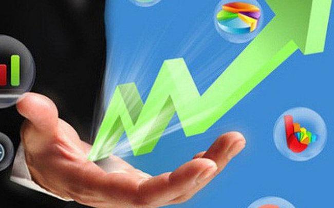 Chứng khoán Thiên Việt (TVS) phát hành hơn 8 triệu cổ phiếu trả cổ tức và cổ phiếu thưởng