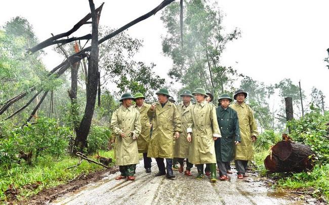 40 công nhân, chuyên gia thủy điện Rào Trăng 3 di chuyển bằng đường rừng đến Rào Trăng 4