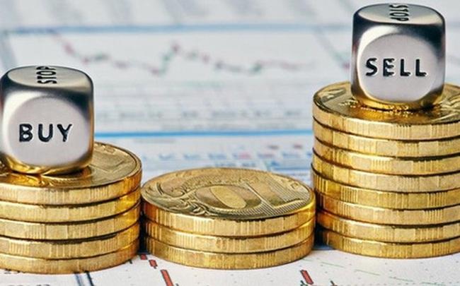 HAG, OGC, MWG, VHC, CC4, ND2, TMS, BII, NDN, VTX, VTD, SD1, TJC: Thông tin giao dịch lượng lớn cổ phiếu