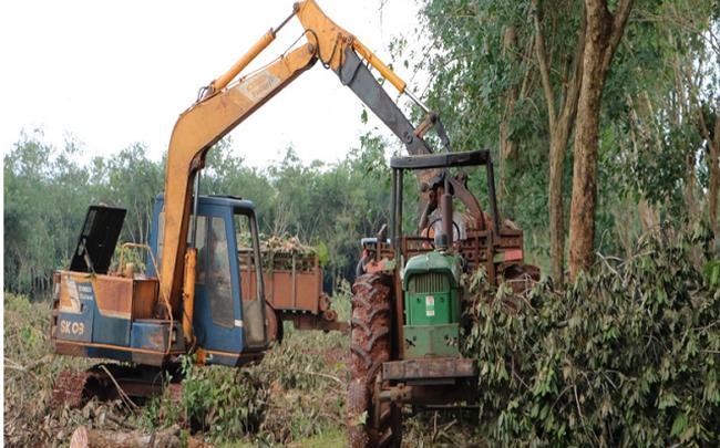 Đồng Nai bàn giao 1.800 ha đất làm sân bay Long Thành ngay trong tháng này