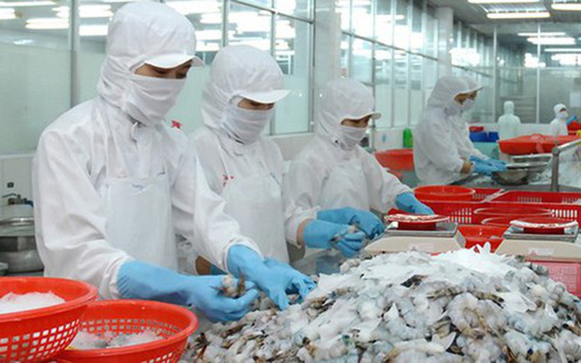 """Xuất khẩu thuỷ sản sang EU đã """"thoát âm"""", dự kiến đạt hơn 1 tỷ USD năm 2020"""