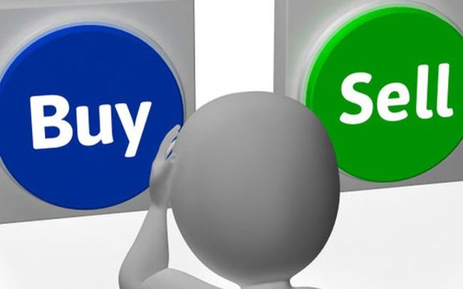 MBB, VIX, LIG, MDG, TLH, NAF, PPP, VGG, PBC, PMC, NTF, PPE, EBA, MCT: Thông tin giao dịch lượng lớn cổ phiếu