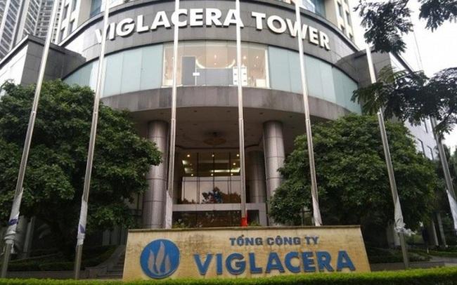 GELEX chào mua thành công 94,61 triệu cổ phiếu VGC, tiến sát mục tiêu sở hữu chi phối Viglacera