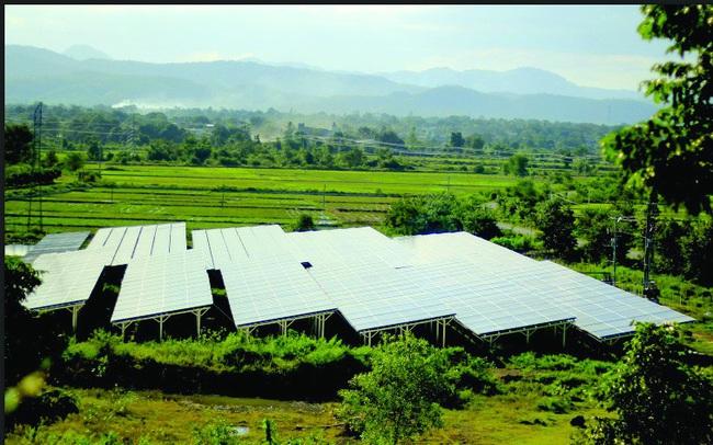 Mặt trái cơn sốt lắp pin năng lượng mặt trời