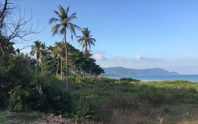 Xuất hiện nhiều nghi vấn quanh 2 hồ sơ đấu giá khu đất 80.000m2 tại Côn Đảo