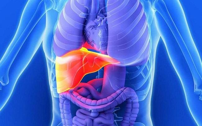 Chất độc phá hủy tế bào gan mỗi ngày: 5 việc nhỏ cần làm để ngăn chặn nguy cơ hỏng gan