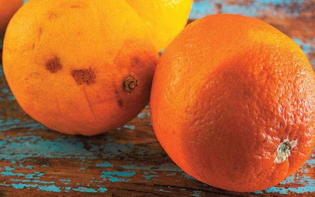"""2 vợ chồng cùng lúc mắc ung thư gan không rõ lý do, bác sĩ nói """"thủ phạm"""" là loại trái cây độc gấp 10 lần xyanua mà họ ăn hàng ngày"""