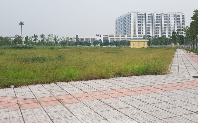 Hà Nội: Lình xình đấu giá khu 'đất vàng' ở Long Biên