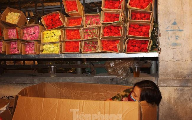 Nhọc nhằn mưu sinh trong giá lạnh ở chợ hoa lớn nhất Thủ đô