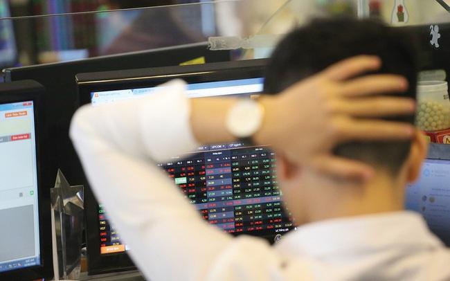 """VAFI: """"Cổ tức bằng cổ phiếu không thể coi là thu nhập từ đầu tư vốn và không nên bị áp thuế"""""""