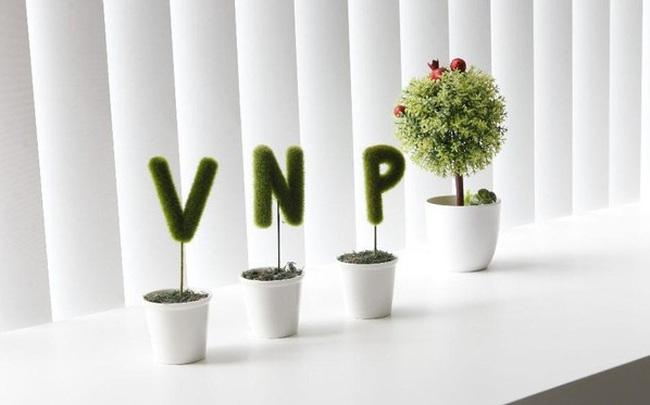 Vatgia.com, Baokim.vn, Nhanh.vn của VNP làm ăn thế nào?