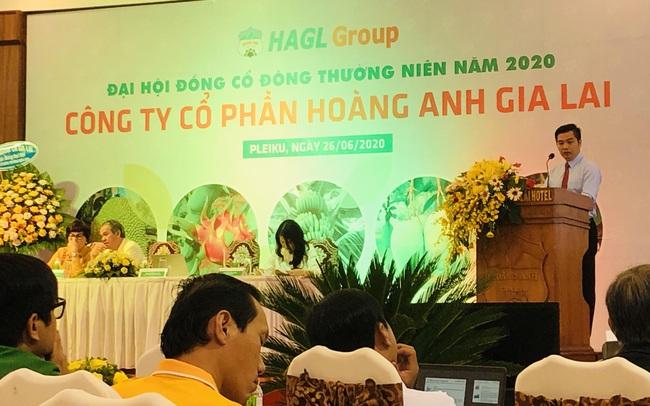 Hoàng Anh Gia Lai miễn nhiệm một Phó Tổng Giám đốc