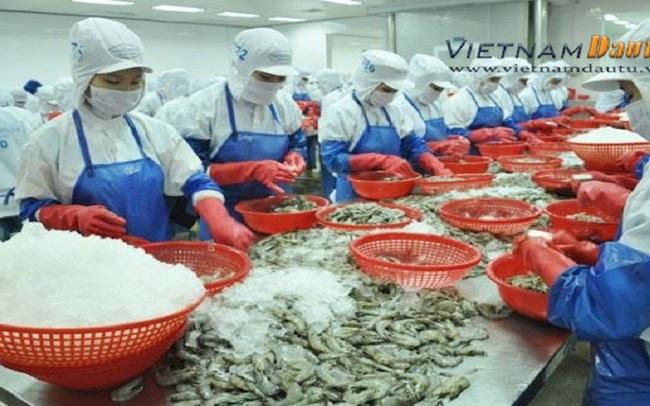 Bộ Nông nghiệp lưu ý DN: Trung Quốc tăng cường kiểm soát hàng thủy sản đông lạnh nhập khẩu