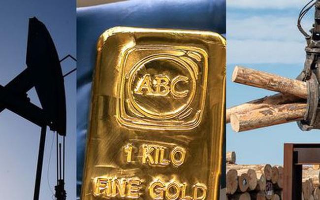Thị trường ngày 9/12: Giá vàng cao nhất 2 tuần, dầu neo cao, nông sản đồng loạt giảm