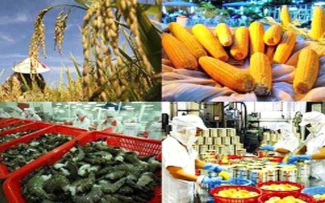 Vì sao ngành ngành nông – lâm – thủy ở ĐBSCL lại tăng trưởng âm?