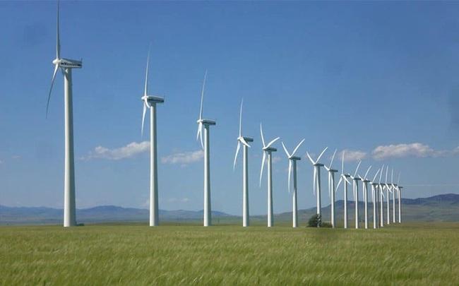 Fecon trúng thầu gần 2.000 tỷ đồng dự án điện gió từ đầu năm