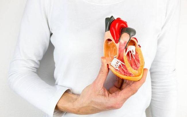 """Mạch máu không khỏe thì các cơ quan quan trọng của cơ thể sẽ ngừng hoạt động, 3 loại """"trà"""" có lợi cho mạch máu dân văn phòng nên uống 1 cốc mỗi ngày"""