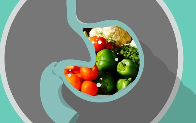 Thức ăn tồn đọng trong dạ dày bao lâu trước khi được tiêu hóa hết? Bí mật này sẽ giúp bạn sắp xếp một chế độ ăn uống hoàn hảo