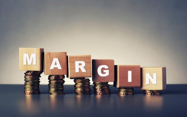 Lợi nhuận âm, cổ phiếu của nhiều doanh nghiệp bị cắt margin