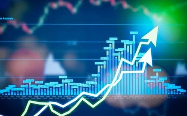 Hapaco lên tiếng về việc cổ phiếu HAP tăng trần 12 phiên liên tiếp, từ 3.000 lên gần 7.000 đồng