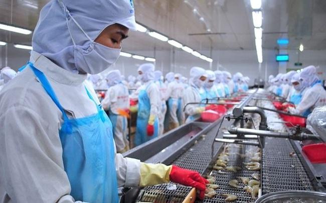 VASEP: Dự kiến xuất khẩu tôm sang Hàn Quốc quý III tăng trưởng khả quan