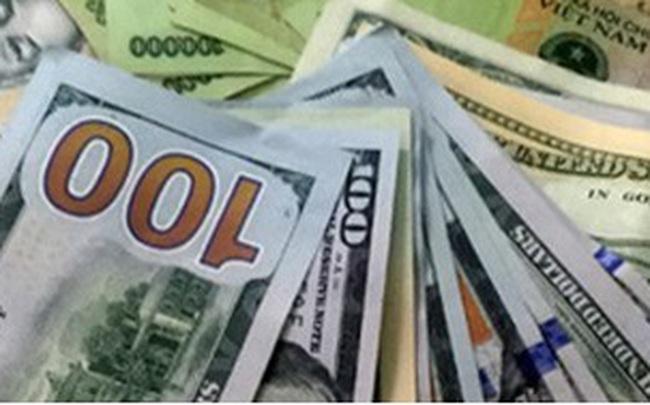 Giá đồng USD hôm nay biến động nhẹ