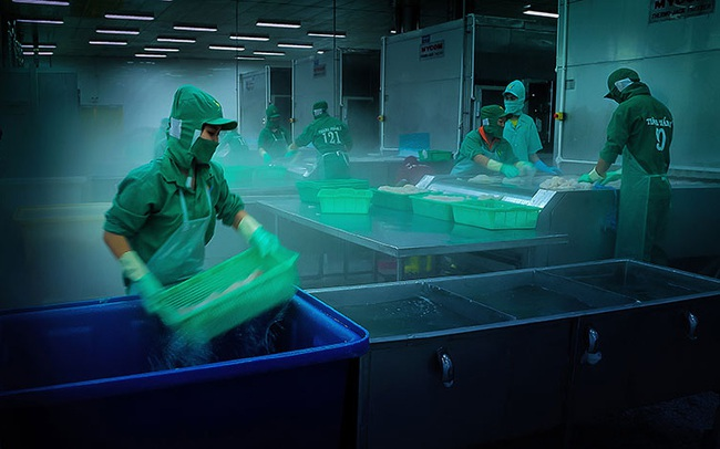Chuỗi cung ứng lạnh lên ngôi giữa đại dịch Covid-19, riêng thị trường tại Việt Nam dự đạt 1,8 tỷ USD vào năm 2021