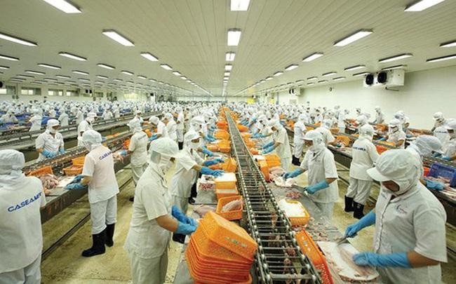 VASEP dự báo xuất khẩu thủy sản có thể đạt 8,26 - 8,3 tỷ USD năm 2020