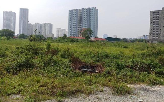 Thủ tướng yêu cầu kiểm tra phản ánh hơn 300 dự án bỏ hoang tại Hà Nội