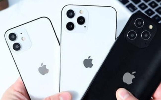 Loạt iPhone đầu tiên về Việt Nam có giá không tưởng