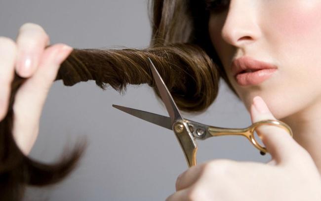 Doanh thu 2019 chỉ hơn 2 triệu đồng, một công ty cắt tóc gội đầu vừa huy động 738 tỷ đồng trái phiếu