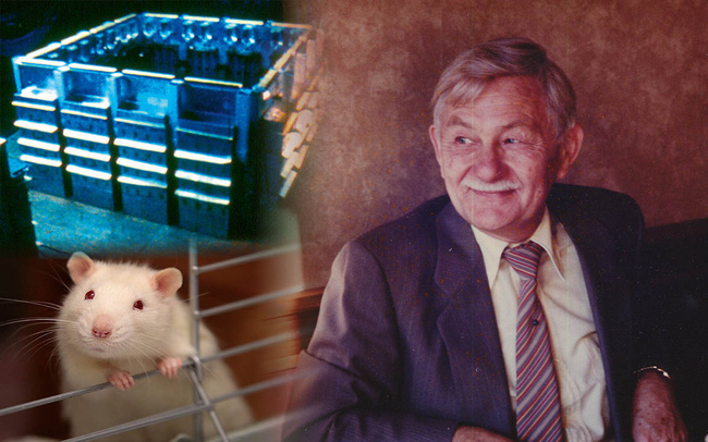 """""""Vũ trụ 25"""" - thành phố """"hoàn hảo"""" dành cho loài chuột: Thí nghiệm như hồi chuông cảnh tỉnh cho nhân loại, cảnh báo một tương lai mà không một ai muốn nó xảy ra"""
