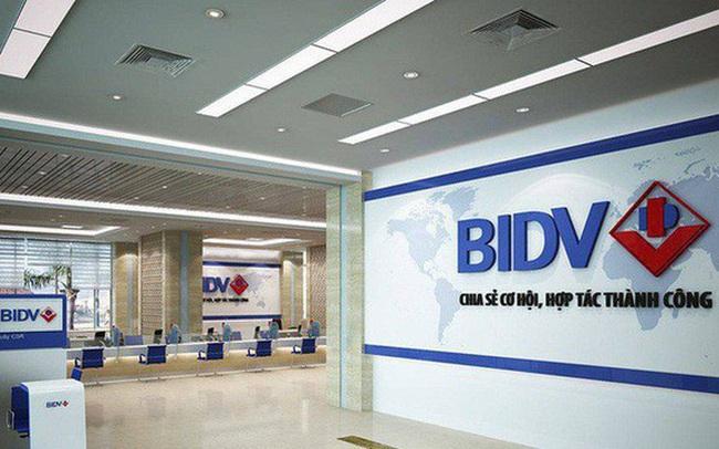 BIDV rao bán hơn 800 m2 đất giữa trung tâm Hà Nội để thu nợ, giá khởi điểm 98 tỷ