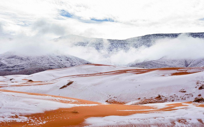 Chuyện khó tin: Tuyết rơi phủ trắng xóa một phần sa mạc Sahara, nhiệt độ chạm mức-2 độ C