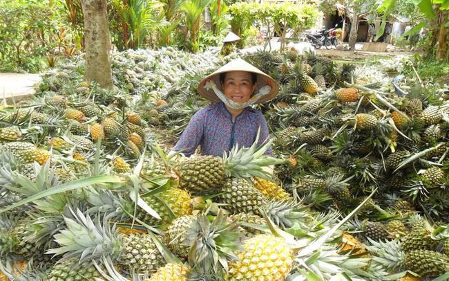 RCEP có mở ra cơ hội tăng xuất khẩu rau quả, giảm rủi ro cho doanh nghiệp vào thị trường Trung Quốc?