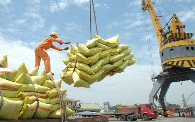 238 thương nhân nhận Giấy chứng nhận đủ điều kiện kinh doanh xuất khẩu gạo