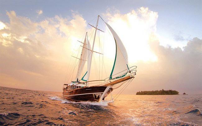 Câu chuyện về gió và những cánh buồm khiến bạn sực tỉnh: Hóa ra đây là lý do người giàu vẫn cứ giàu, còn bạn mãi chỉ dậm chân tại chỗ?