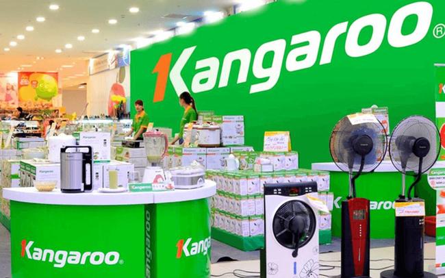 Lợi nhuận của Kangaroo tăng gấp đôi trong năm COVID-19