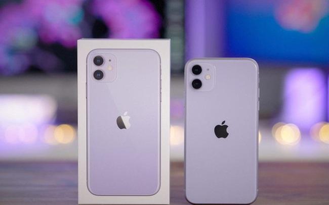 """iPhone 11 xả kho, giảm giá """"sốc"""" 5 triệu đồng trong ngày đầu năm"""